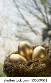THREE GOLD EGGS IN BIRDS NEST WITH TREE IN BACKGROUND