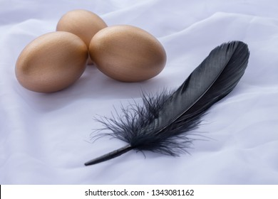 Three golden Easter eggs with one black feather laying on white linen