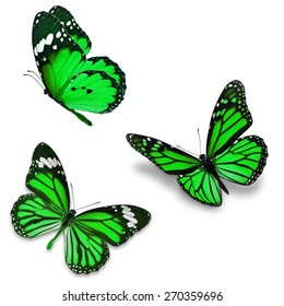 Three green butterfly, isolated on white background