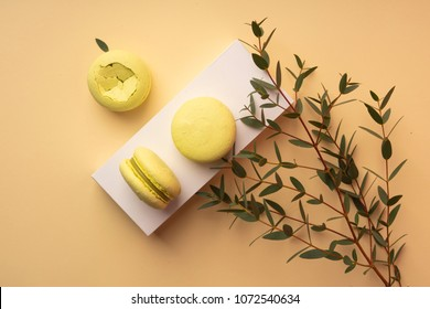 Three green pistachio macaroons cakes on a white gift box with buds of white flowers chamomile decorated with branches with leaves. Copy space. Bakery, cooking, gifts, conceptual and advertising.