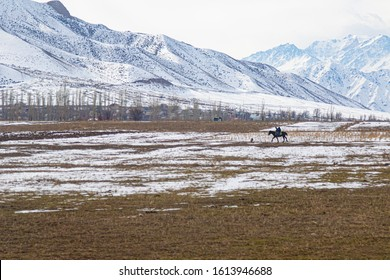 Three guys riding a hourse in a field in the kyrgyz countryside covered with snow and mountains on the background