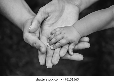 Three hands of the same family - father, mother and baby stay together. Close-up. The concept of family unity, protection, support, prosperity, love and parental happiness.