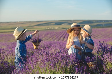 Three happy children in lavender field