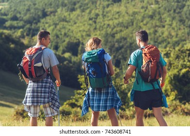 Three hikers hiking  in the nature