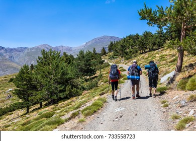 Three hikers walking in the morning on the path that leads to Mulhacen