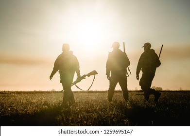 Three hunters on the background of the sunset are on the field