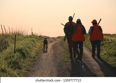 Three hunters walking up the road after a day's bird hunt carrying their rifles with their dog by their side.