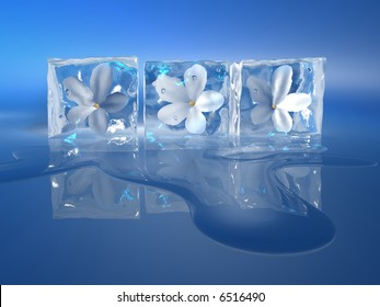 Three ice cubes with a flowers inside and water stain on blue background - 3d render
