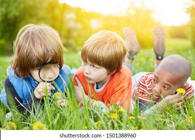 Three kids with loupe play explorer in nature from kindergarten