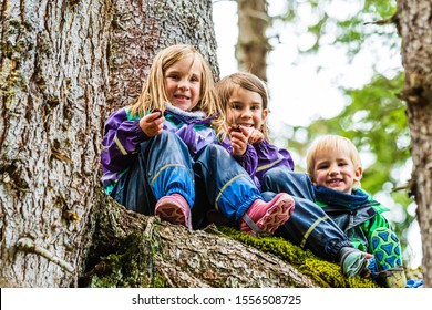 Three kids playing in the forrest