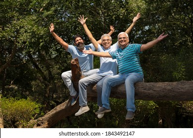 Three laughing senior friend relaxing at the park