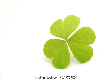 Three leaf