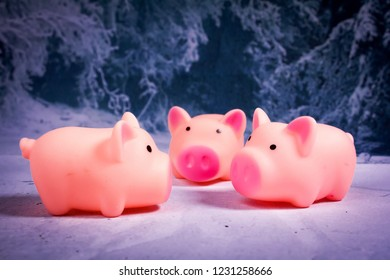 three little pigs in the snow in the forest