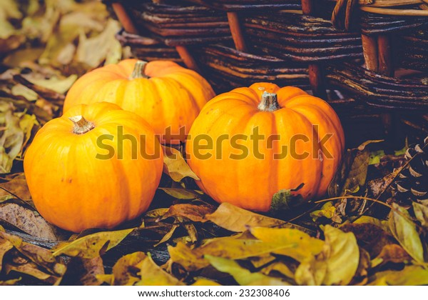 Three little pumpkins, brown autumn leaves and an old basket