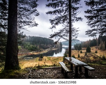Three Lochs Forest Drive Images, Stock Photos & Vectors