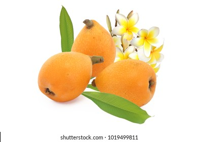 Three loquats with flowers and leaves of loquat isolated on white background