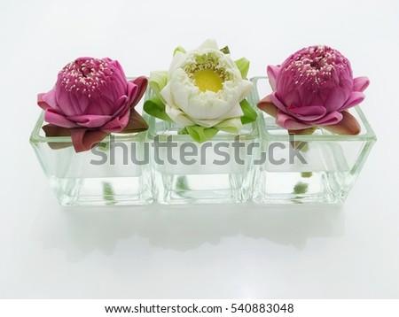 Three Lotus Flower Glass Vase Stock Photo Edit Now 540883048
