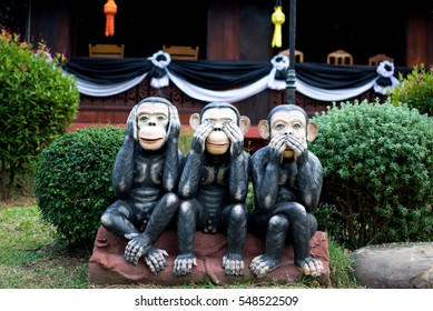 Three monkey,close up of hand small statues with the concept of see no evil, hear no evil and speak no evil.