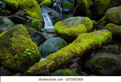 Three moss covered rocks in a mountain stream, Washington, USA