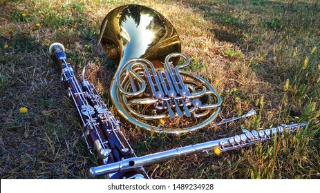 Three musical instruments horn, bassoon, flute on the grass.