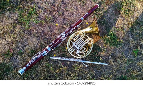 Three musical instruments lie on the grass. French horn, bassoon, flute