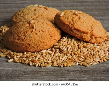 Three oatmeal cookies and oat grains. Ruddy oatmeal cookies. Macro. Copy space.