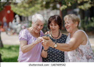 Three old women are smiling and looking photos at the at screen of the phone in the park on a warm day