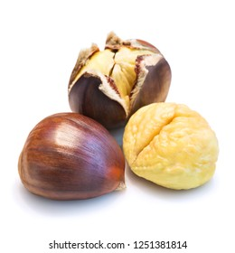 three  open and closed edible chestnuts still life isolated on white background