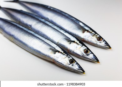 Three Pacific saury (Cololabis saira / mackerel pike / Sanma ) isolated on neutral white.
