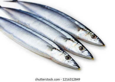Three Pacific saury (Cololabis saira / mackerel pike / Sanma ) isolated on  white.