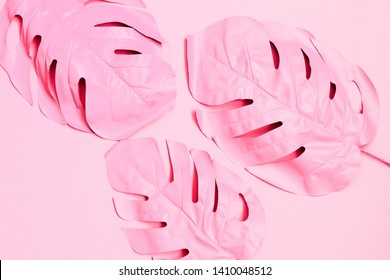 Three painted tropical palm leaf of monstera. fashion pink concept. minimalism and surrealism. Summer concept.