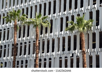 Three palm trees in front of a white facade