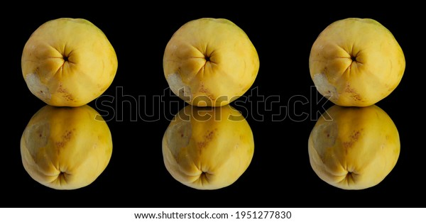 three-papayas-line-their-reflection-600w