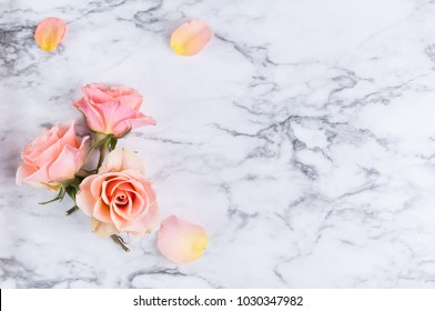 three peach colored roses with petals on a marble background