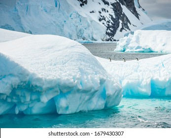 three penguins between icebergs in Antarctica