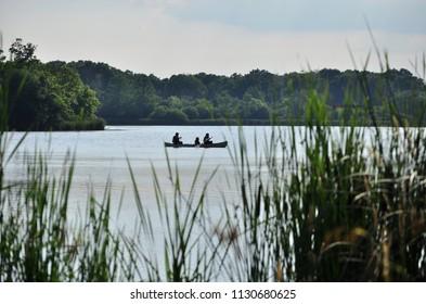 Three people canoeing on the lake in Elk Grove Village, Busse Woods.