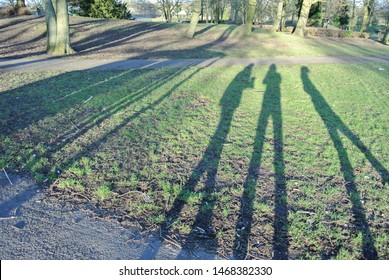 Three people posing with long shadows against green grass