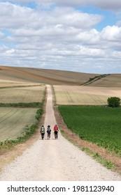 Three pilgrims walking on the Santiago Way, in Spain. Wearing mountain clothes, backpacks, with the typical Santiago shells and canes. Beautiful landscape around. La Rioja.