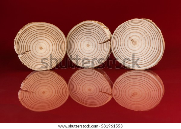Three pine saw cuts are standing on ribs on glossy surface their reflections on red background.