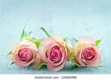 Drie roze rozen op lichtblauwe houten sjofele chique achtergrond met kopieerruimte