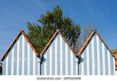 three pointy roofs with tree and blue sky