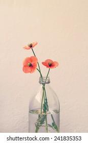 Three poppies in a retro glass milk bottle vase