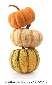 three pumpkin halloween thanksgiving harvest isolated