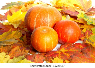 three pumpkins between colorful autumn maple leaves