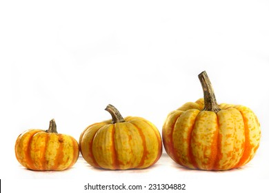 Three pumpkins ranging in size small, medium and large.