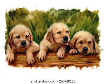 three puppies dog lovers lab golden doodle or other oil painting classic torn edges puppy