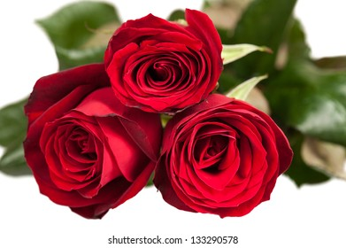 Three red roses isolated on white