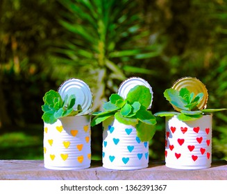 Three reused cans. Recycled cans with the same succulent plants (Kalanchoe fedtschenkoi) at a rustic window on tropical background.