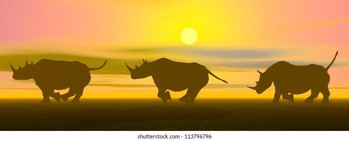 Three rhinoceros running in the savannah by sunset light