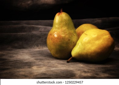 Three ripe bosc pears on gray mottled background, set up, composed and photographed to resemble old fashioned still life painting.